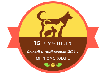 Banners for 15 лучших блогов о домашних животных 2017