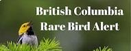 BC Rare Bird Alert