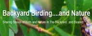 Backyard Birding and Nature